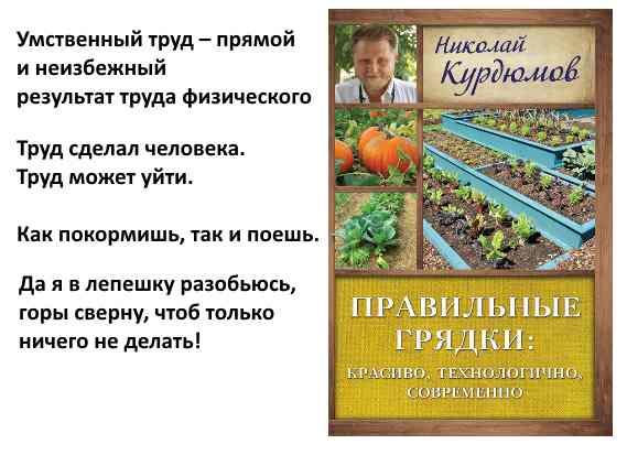 мысли Курдюмова