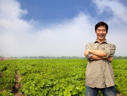Природное земледелие сказывается положительно на экономике